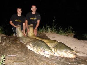 Simon Baumgarten und der Fisch