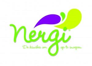 NERGI_LOGO_NL