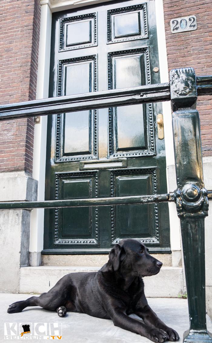 amsterdam2-3