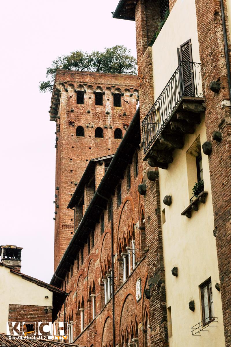 Lucca - www.kochhelden.tv