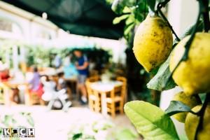 Lemon - www.kochhelden.tv
